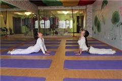 广州悠悦瑜伽半年卡课程