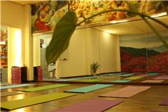 维姬瑜伽-乐从馆