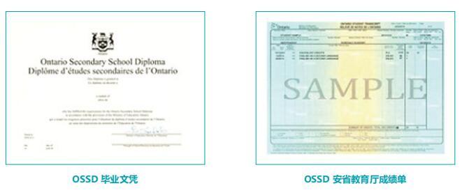 广州OSSD北美高中课程保录直升项目