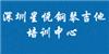 深圳星悦钢琴吉他培训中心