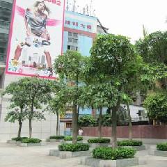广州市信星职业培训学校越秀校区图4