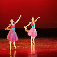 北京舞蹈学院一级芭蕾舞教师培训广州班