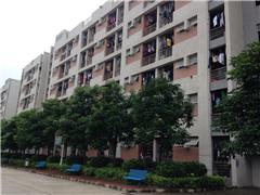 广州司法考试大二预科培训班