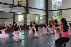 广州专业少儿舞蹈启蒙培训班(针对新教学)