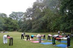 广州瑜伽理疗私教一对一减肥塑身课
