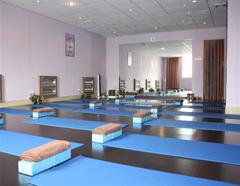 广州高级瑜伽教练培训班(名师大班授课)