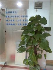 中国地质大学本科网络教育专升本培训班