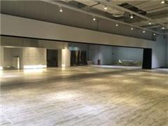 广州现代舞专业培训课程