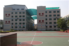 广州美国想象力英语培训课程