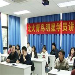 北大青鸟App测试工程师专修班