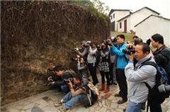 广州大众摄影提高班培训