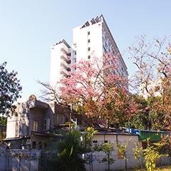 广州高考复读冲本科班