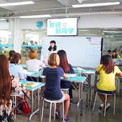 广州C级专业宠物美容考证课程培训班