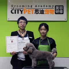 广州宠物美容C级一个月深造培训班