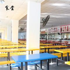 广州音乐高考培训考前重点强化班