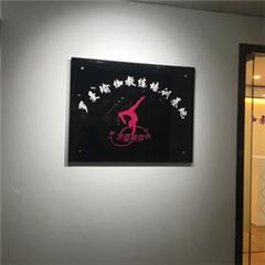 广州空中瑜伽进修培训课程