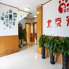 北京宠物美容师B级培训课程