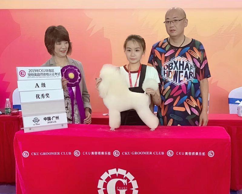 广州宠物美容师C级考证班