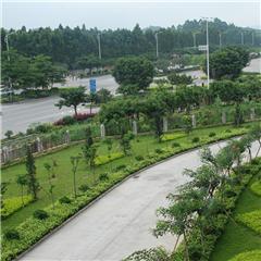 广州会展策划与管理专业高中起点3年制大专