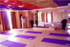 厦门高级精准体系瑜伽教练培训班