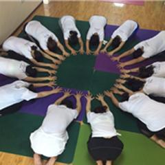 北京瑜伽特色培训班