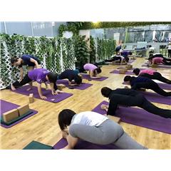 北京体能训练课程
