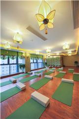 杭州专业瑜伽教练培训