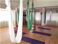 深圳瑜伽初中高级教练班培训班