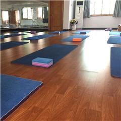 广州中瑜伽体系空中瑜伽课程