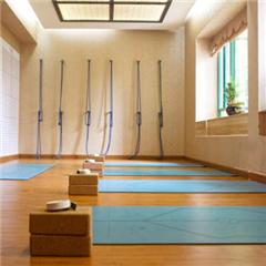 深圳理疗瑜伽培训课程