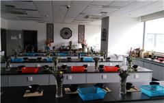 杭州花店花艺设计初级班