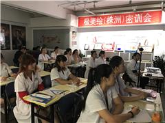 武汉半永久纹绣一对一技术培训班