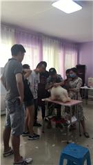 长沙宠物美容护理c级零基础创业培训班