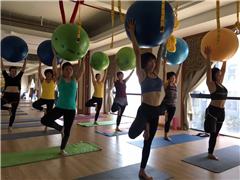 東莞專業瑜伽教練培訓班