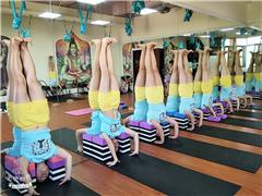 东莞整体瑜伽教培培训班