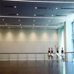 广州少儿芭蕾精品兴趣班