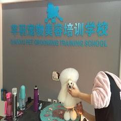 北京宠物美容师B级速成培训班