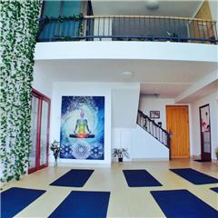 广州净食排毒瘦身瑜伽培训课程