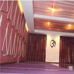 上海首期孕妇及产后修复瑜伽深度培训班