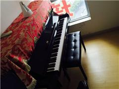 上海成人钢琴零基础课程