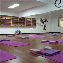 佛山高级瑜伽导师培训班