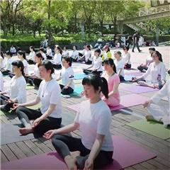 上海哈达瑜伽培训班