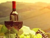 深圳德斯汀安葡萄酒学院的师资力量如何?