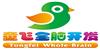 广州童飞全脑教育