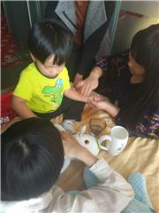 上海传统中医正骨整脊培训课程