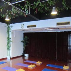 瑜伽导师班(从零到高级瑜伽导师)