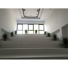 北京AE动效设计培训课程