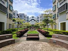 上海新加坡留学预科班