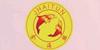 深圳金海豚美甲化妆纹绣皮肤管理培训机构