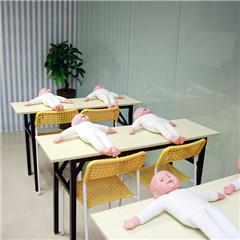 深圳高级早教育婴师培训班